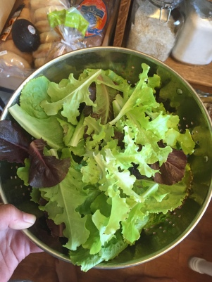 Nothing like a hand-picked salad to symbolize summer